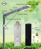 réverbère solaire complet de 20watts DEL avec le détecteur de mouvement de PIR