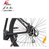 """29 """" bici elettrica del motore senza spazzola delle batterie di litio 48V due 350W"""