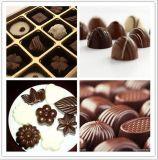 Schokoladen-schmelzendes Maschinen-Schokoladen-Auftauenbecken