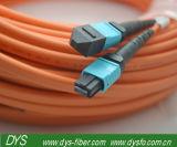 48 cavalier de fibre optique Multi-Fiber des faisceaux MTP-MTP Om2