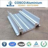 Industrial Facility를 위한 주문품 Aluminum 또는 Aluminium Heatsink