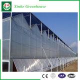 Tuin/van de Tunnel van de Landbouw het Groene Huis van het PC- Blad voor het Groeien van de Groente/van de Bloem