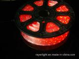 상업적인 훈장 빛이 LED 밧줄 끈 그물에 의하여 점화한다