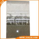 300*600 mm de inyección de tinta de 3D de azulejos de cerámica para baño