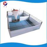 Casse di plastica della stalla/scuola materna di svezzamento della stecca della strumentazione dell'azienda agricola animale/base di conservazione