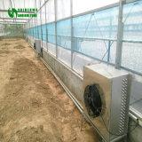 温室の熱気のブロアの熱気のヒーター