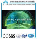 Túnel 100% acrílico Lucite material del Proyecto Oceanario