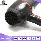 パーソナルケアRg9900のためのACモーターを搭載する電気大広間Hairdryer