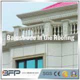 Китайский экономический природного гранита Balustrade для дома/наружное оформление