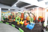 Adults를 위한 Outdoor Playground Equipment를 위한 Yl-X141 Amusement Park Games Factory