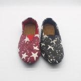 人様式第177のための標準的な様式のキャンバスの偶然靴