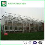 Glasgewächshaus fabrizierte Garten-Gewächshaus-Gewächshaus-Entwurfs-Garten verwendete Gewächshäuser für Verkauf vor