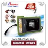 獣医は超音波のスキャンナーの医療機器に用具を使う