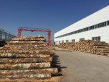 madeira compensada laminada alta qualidade do folheado de 3mm para a mobília