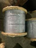 Гальванизированное высокое качество веревочки стального провода 19*7 Withi