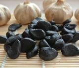 Чеснок здоровья черный с нежностью и Cloves