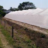 3.6mの幅の安い反昆虫の網の網16X10 20X10