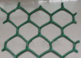 A cor verde Geonet Hexagonal China Fabricante