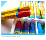 24PCS Hexangular Jumbo Oil Pastel per Kids e Students