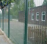 Revêtement poudré noir ou vert anti escalader la clôture à mailles de haute sécurité 358