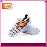 O esporte calç sapatas do futebol para a venda