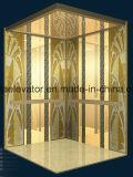 Elevatore del passeggero dal fornitore in maniera fidata (JQ-N024)