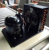 110V 60Hz USA Markt-Abkühlung zerteilt kleines kondensierendes Gerät