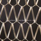 De spiraalvormige Stof van het Metaal voor de Bouw van Netwerk van het Metaal van Voorzijden het Spiraalvormige Decoratieve