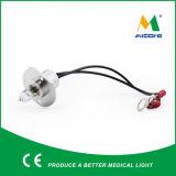 Lámpara bioquímica del analizador de Mindary BS200 BS800 BS300 BS400 12V20W