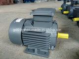 Alta eficiência marca Beide 3 Motor de indução de fase