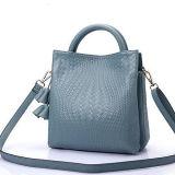 شعبيّة الصين مصنع مموّن سيدات [جنوين لثر] حقيبة يد نساء [شوولدر بغ] مع [تسّل] [إمغ5124]