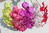 La orquídea artificial de seda florece las flores falsas para la decoración casera de la boda