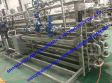 Ice Cream Production Line Turnkey Solution /Ice Cream Equipment Machinery
