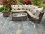 Il sofà di vimini del giardino ha impostato con il POT di fiore laterale
