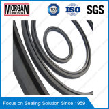 R37 Perfil Rotary Shaft Fabric Rubber Bonded Oil Seal