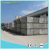 白板の壁羽目板またはコンクリートの壁のパネルの鋳造物