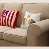 Sofà americano del tessuto di stile di paese per uso domestico (M3003)