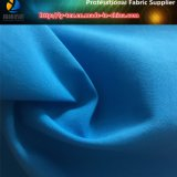 70d*250d NylonTaslon Gewebe für Kleid (R0165)