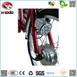 Para la carga triciclo eléctrico 250W con asistencia del pedal de batería de litio de 3 ruedas Moto vehículo adultos