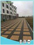 Nuovi lastricatori vetrificati permeabili all'acqua della Camera delle mattonelle di pavimento
