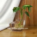 Оптовые ясные вазы цилиндра Arylic дешевые высокорослые для венчаний