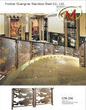 China de buena calidad de acero inoxidable escalera de la cerca (GM-206)