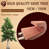 Vente en gros Factory Light Shoe Tree Cedar