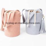 2017 de populaire Manier van de Ontwerper van de Handtassen van de Emmer van Corssbody van het Suikergoed Dame Hand Bag Hcy-1108