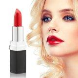 Rouge à lèvres Custom Cosmétique personnalisée