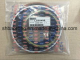 케이스 Cx460 유압 완전한 실린더 물개 Kits/Lz00496, Lz00440, Lz00495