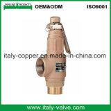 고급장교 또는 청동 안전 밸브 (AV3090)