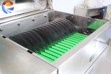 Машина сельдерея Gd-586 Shredding, машина промышленного сельдерея Shredding, шредер сельдерея