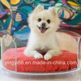 Cama de cão com curvatura acrílica de super qualidade