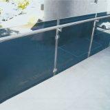 Disegno di vetro dell'inferriata della piattaforma delle scale della balaustra di DIY